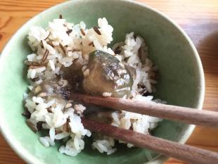 わんまいる 筍とわかめの煮物12